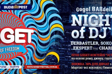 NIGHT of DJs від Sziget Festival